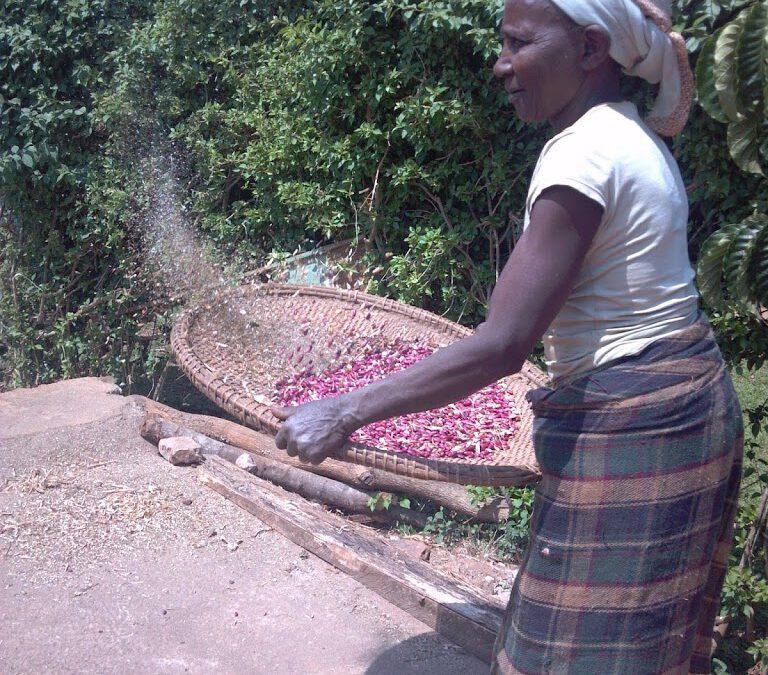 waking up in Rwanda